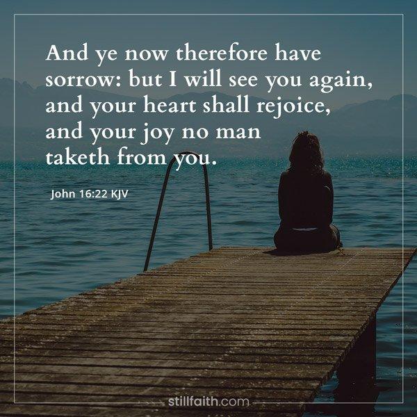 John 16:22 KJV Image