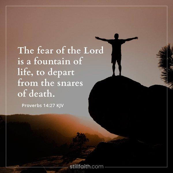 Proverbs 14:27 KJV Image