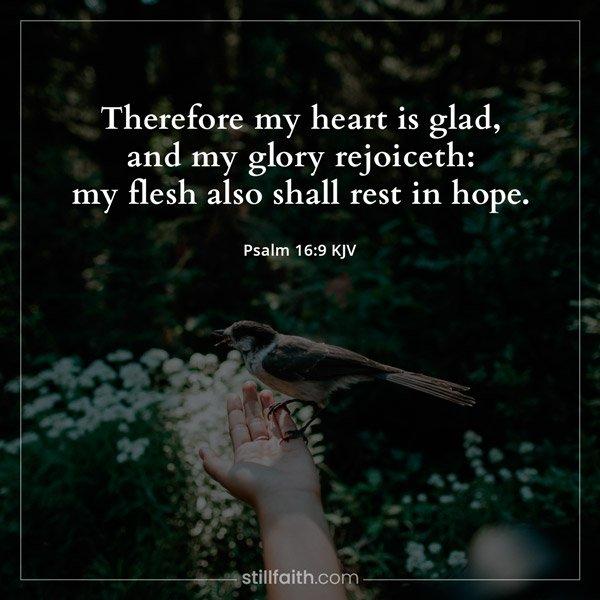 Psalm 16:9 KJV Image