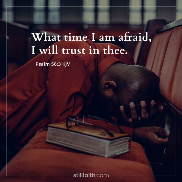 Psalm 56:3 KJV