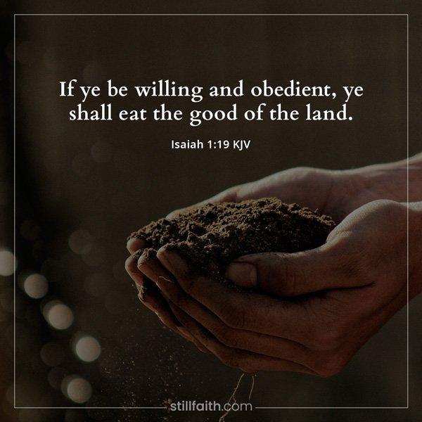 Isaiah 1:19 KJV Image