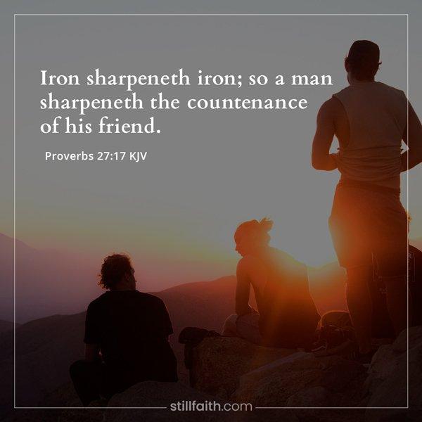 Proverbs 27:17 KJV