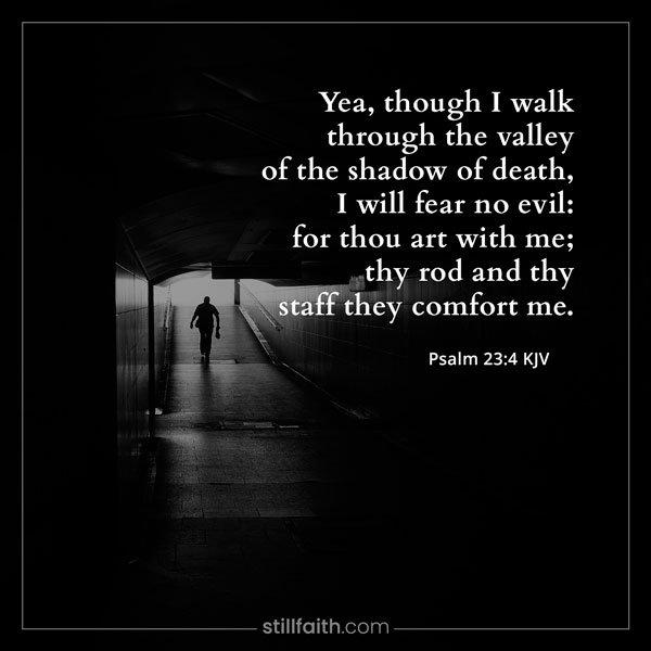 Psalm 23:4 KJV Image