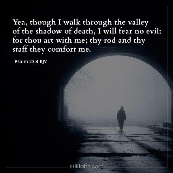 Psalm 23:4 KJV