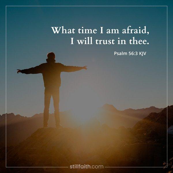 Psalm 56:3 KJV Image