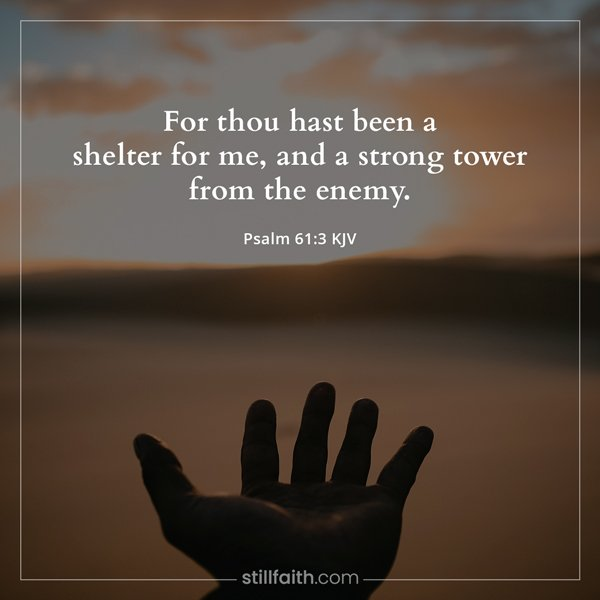 Psalm 61:3 KJV Image