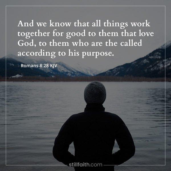 Romans 8:28 KJV Image