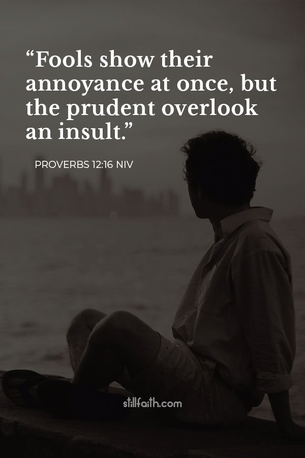 Proverbs 12:16 NIV Image