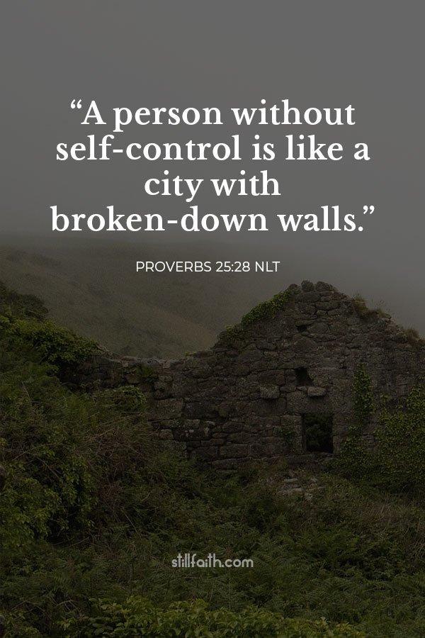 Proverbs 25:28 NLT Image