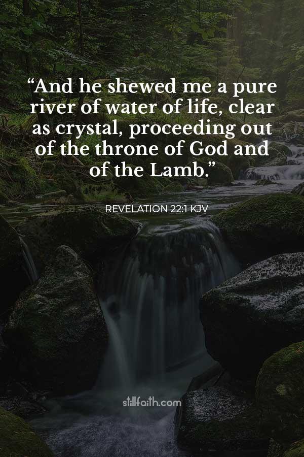 Revelation 22:1 KJV Image