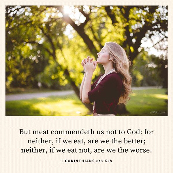 1 Corinthians 8:8 KJV Image