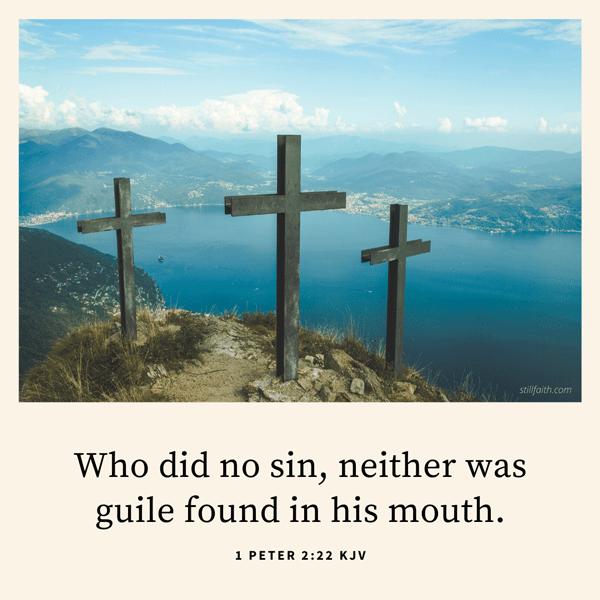 1 Peter 2:22 KJV Image