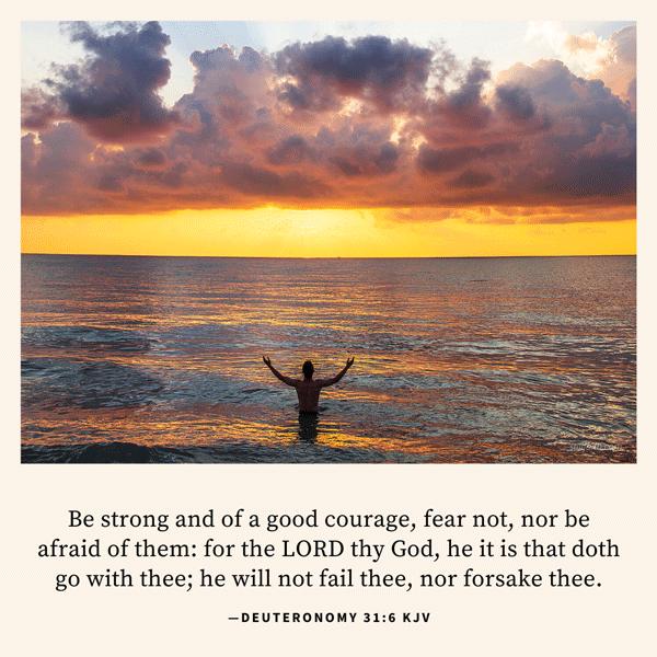 Deuteronomy 31:6 KJV Image