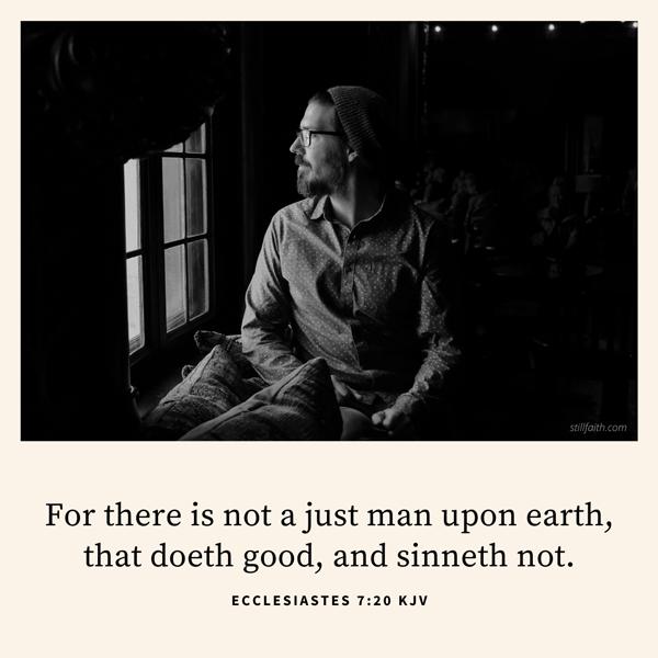 Ecclesiastes 7:20 KJV Image