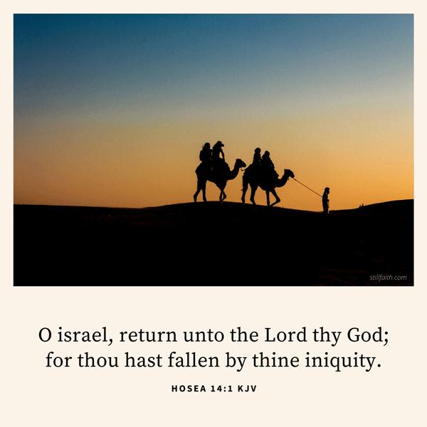 Hosea 14:1 KJV Image