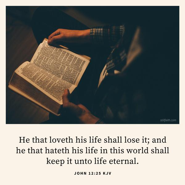 John 12:25 KJV Image