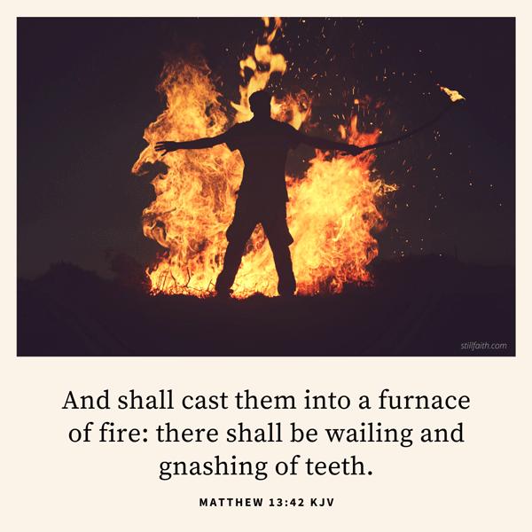Matthew 13:42 KJV Image