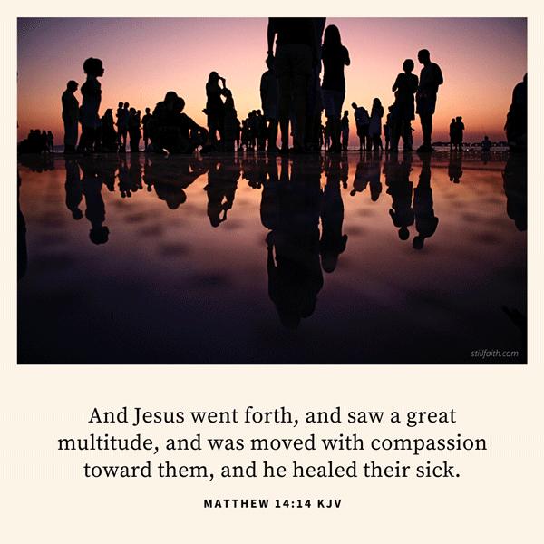 Matthew 14:14 KJV Image