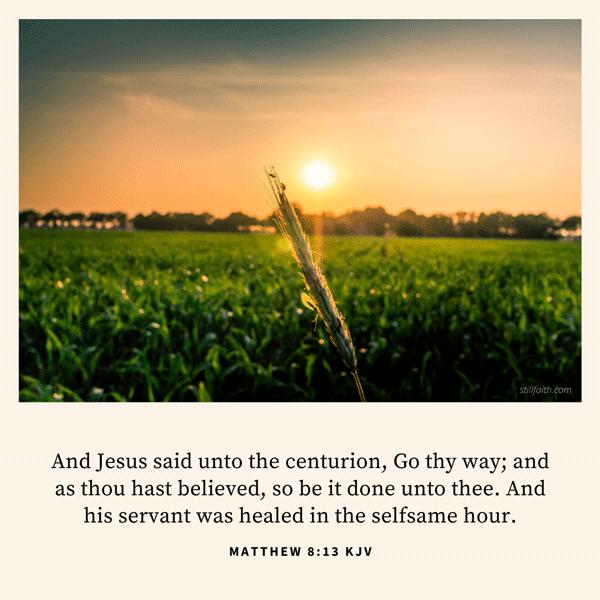 Matthew 8:13 KJV Image