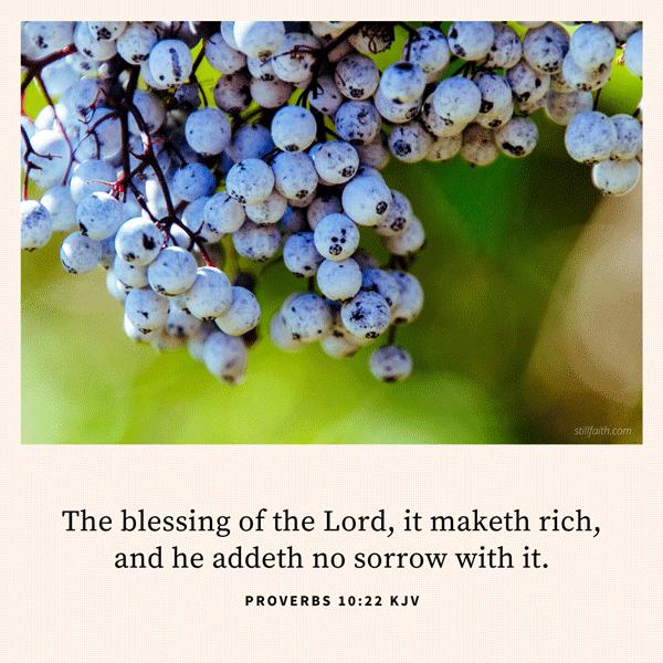 Proverbs 10:22 KJV Image