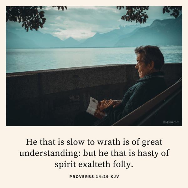 Proverbs 14:29 KJV Image