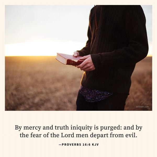 Proverbs 16:6 KJV Image