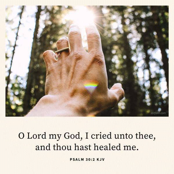 Psalm 30:2 KJV Image