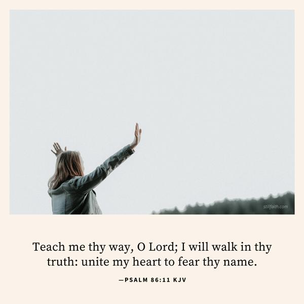 Psalm 86:11 KJV Image
