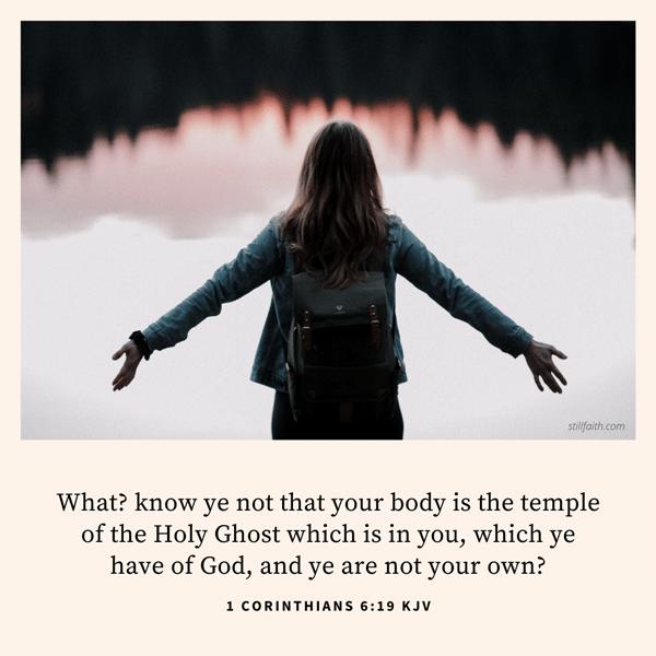 1 Corinthians 6:19 KJV Image