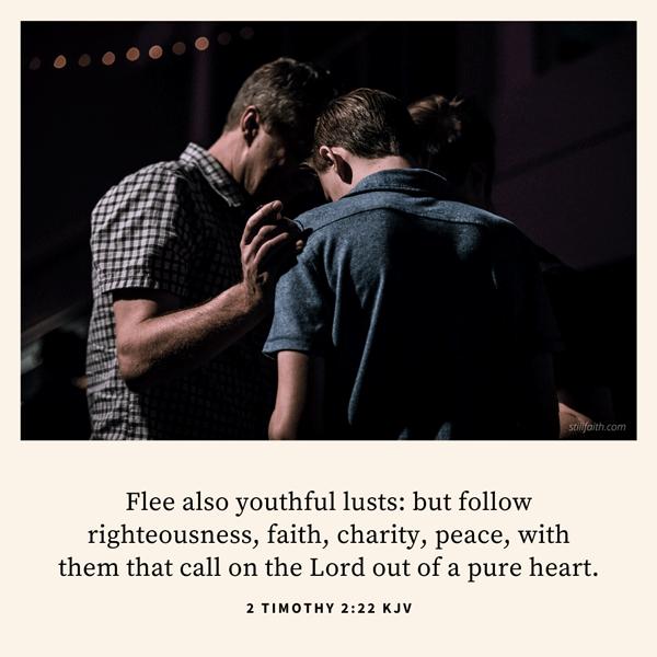 2 Timothy 2:22 KJV Image
