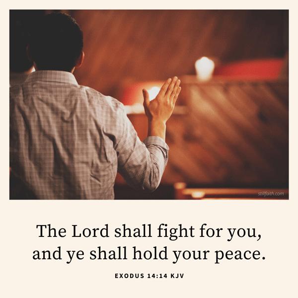 Exodus 14:14 KJV Image