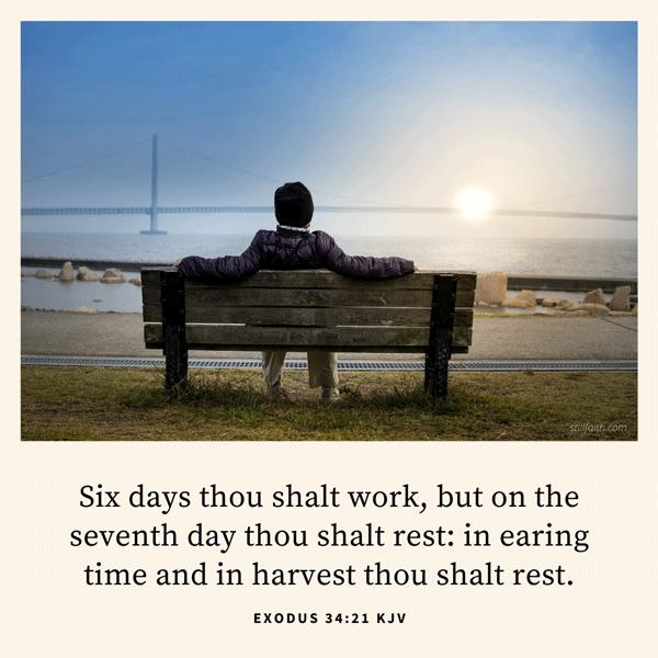Exodus 34:21 KJV Image