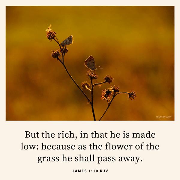 James 1:10 KJV Image
