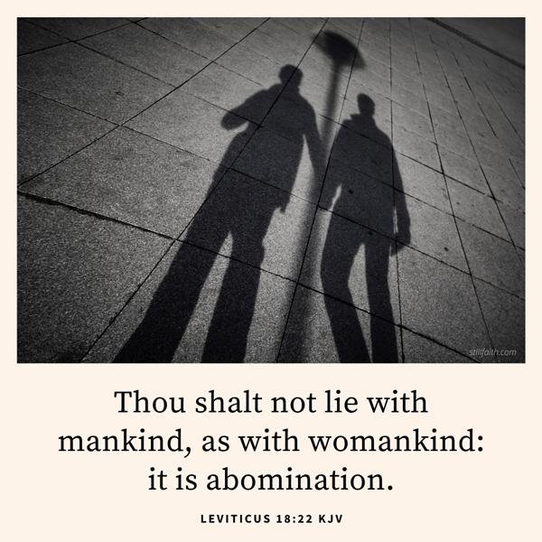 Leviticus 18:22 KJV Image