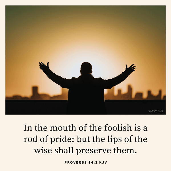 Proverbs 14:3 KJV Image