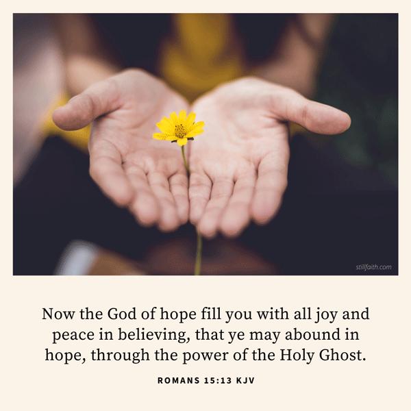 Romans 15:13 KJV Image