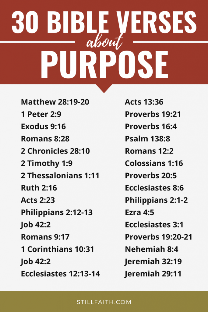 166 Bible Verses about Purpose
