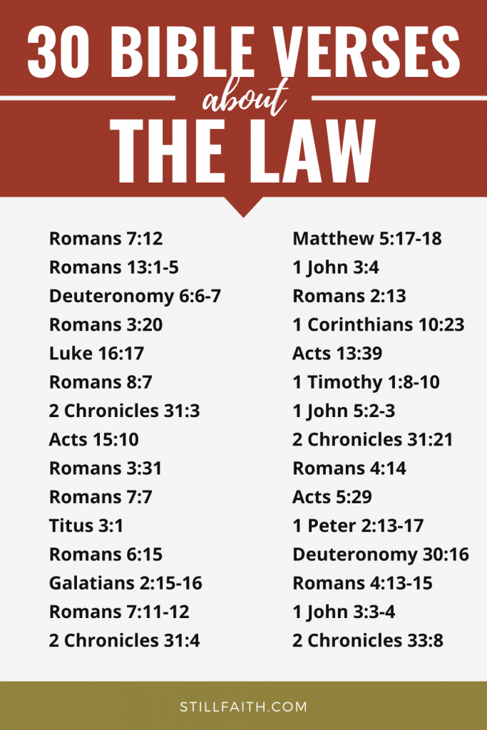 445 Bible Verses about the Law